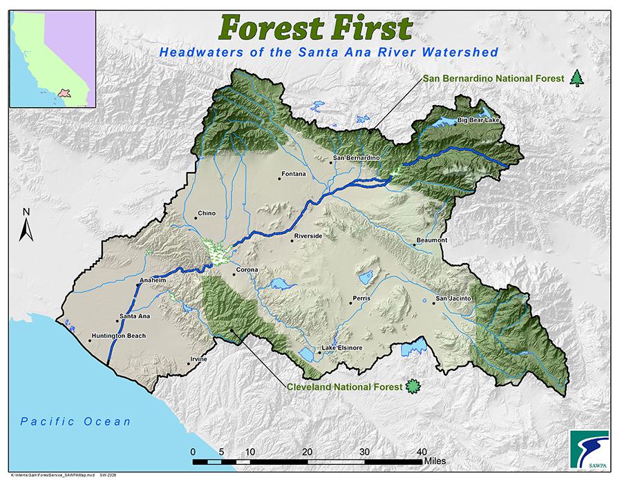 ForestFirst101714
